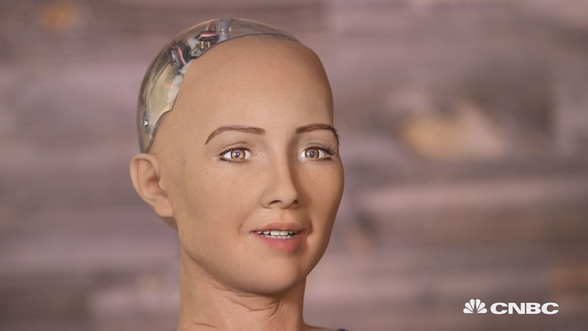 Could you fall in love with this robot?